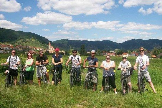 ウィーン発ヴァッハウ渓谷少人数グループバイクツアー