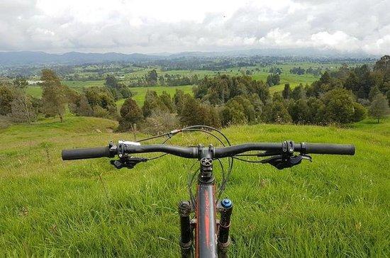 グアタペ島へのマウンテンバイクツアー