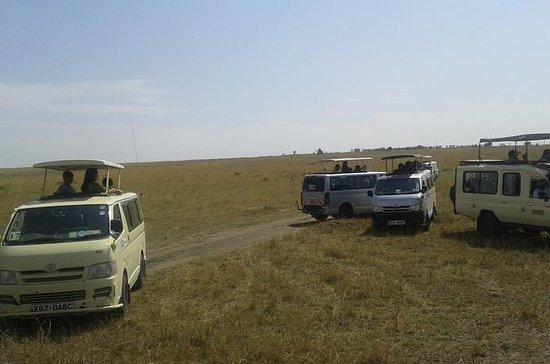 Excursión de 12 días: Maasai Mara...