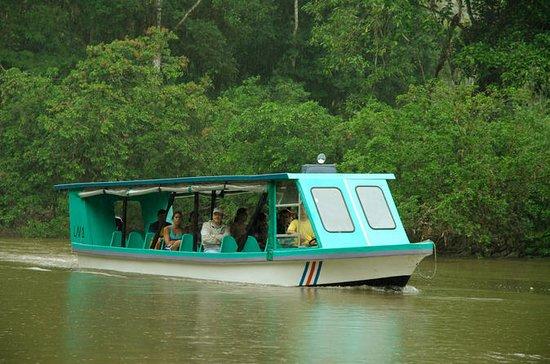 Safari de día completo en el río...