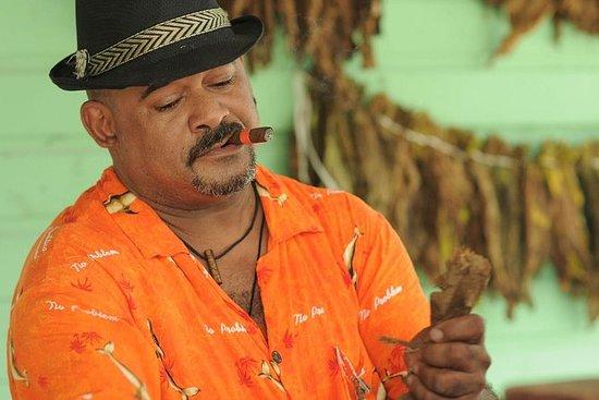 Punta Cana Authentische und...
