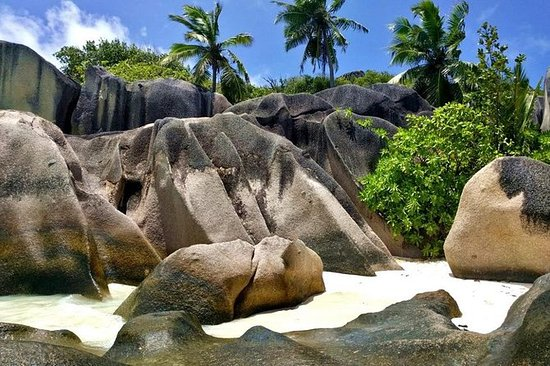Full day Discovery Tour of La Digue...