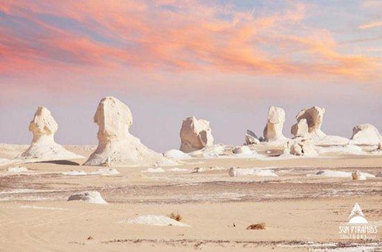 2 Dias de Deserto Branco e Bahariya...