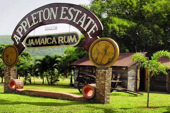 Private Appleton Estate Rum Tur &amp...