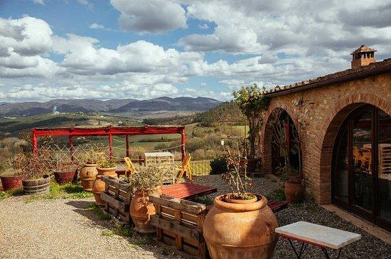 Beautiful Castelli Romani Day Trip: Local Countryside Experience: Beautiful Countryside Private Day Trip: Castelli Romani