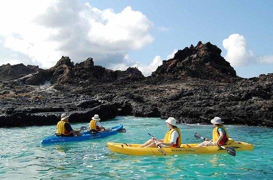 Los 6 días de Galápagos en una...