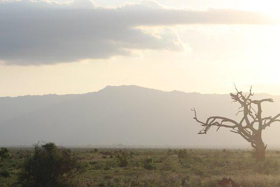 Aqua Paradise Safaris Day Tours: Sonnenuntergang