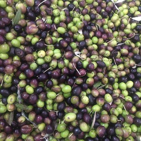 Da noi il mare 🌊 è di olive ! Vieni a trovarci 🔝🇮🇹💚ed assaggerai 🍽🍈le migliori produzioni dell'Umbria !