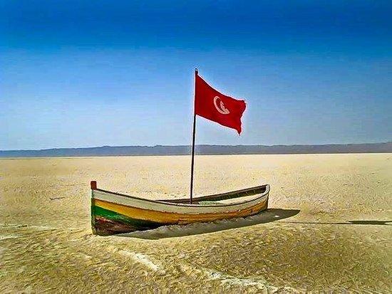in the midst of Chott El Djerid, largest salt lake of the Sahara desert, south-west Tunisia