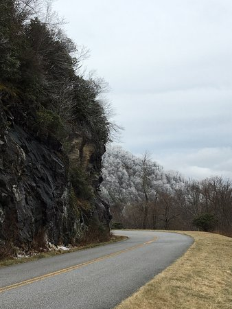 Pisgah National Forest: Frost in the trees was magical!