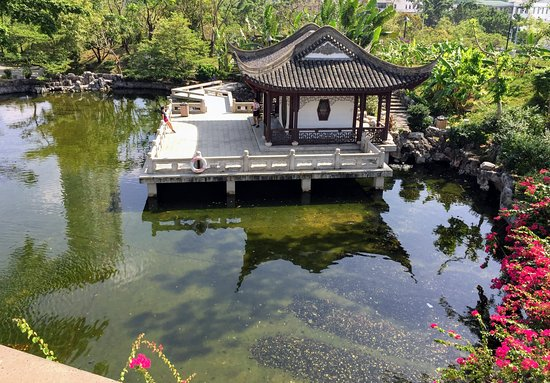Kowloon Walled City Park: A pond in the Kowloon Walled City Park