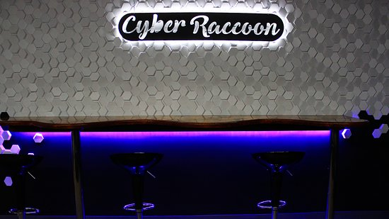 Welcome to Cyber Raccoon Escape Room! New immersive real-life Escape Room Games with a number technologically advanced adventures and Party lounge room to celebrate any event. Opening December, 2018.