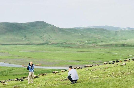 Tutta la Mongolia in 4 giorni