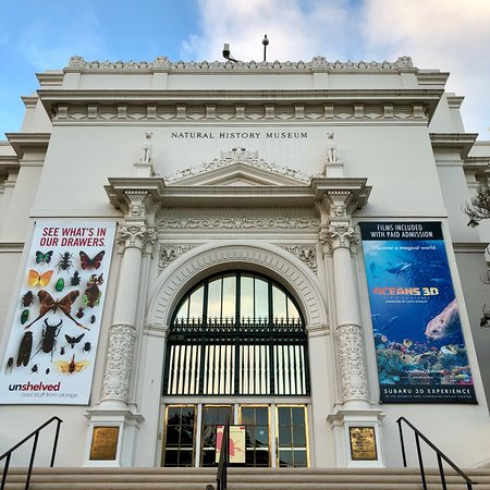 San Diego Natural History Museum 2019 All You Need To Know Before