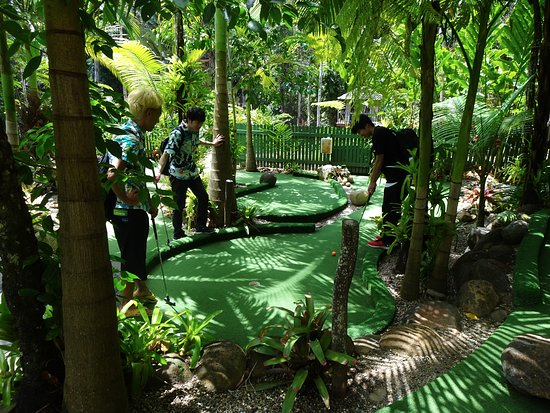 Rainforest Mini Golf