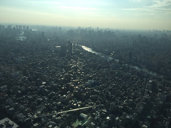 Tokyo Skytree: Views of Tokyo from Japan's tallest structure!