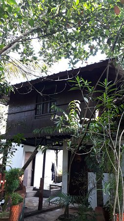 Meadow View Inn: MEADOW  VIEW  INN  THEKKADY   TREE  HOUSE  CANTACT  NO  8606422302  NO  6235722424