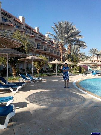 Великолепный отдых в Pyramisa Sahl Hasheesh Resort