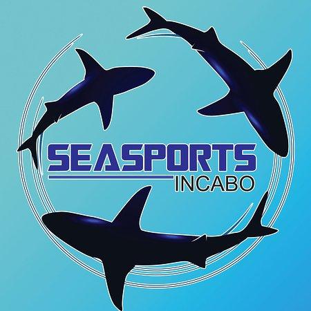 Sea Sports in Cabo