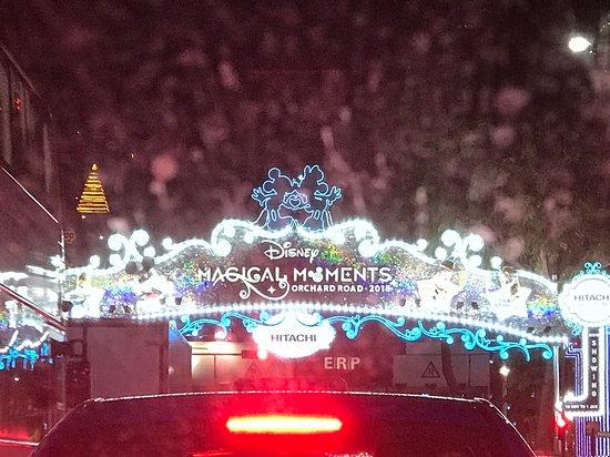Disney themed Christmas lights