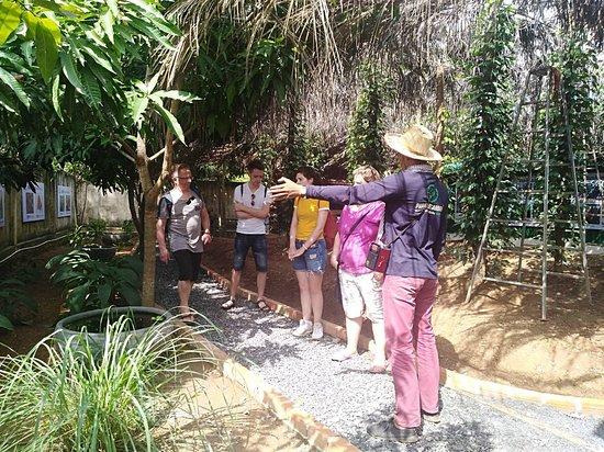 Paradise Gardens Kampot