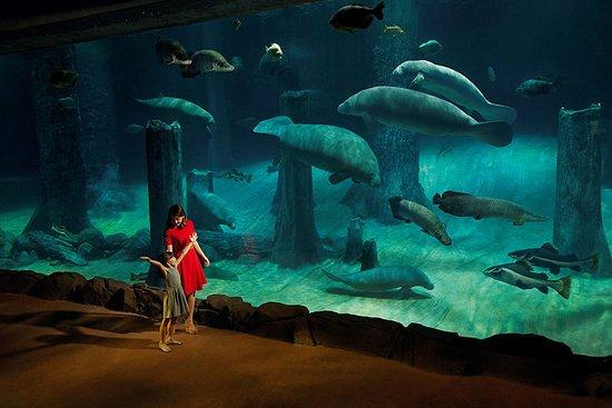 河流探险主题动物园