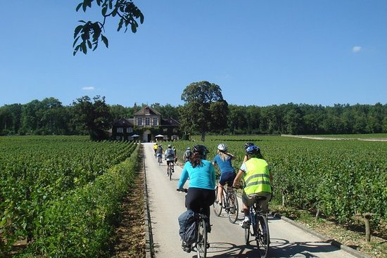 Burgundy Bike Tour med vinsmaking fra...
