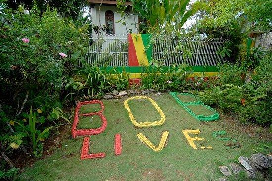 Dagstur til Bob Marleys Nine Mile og...