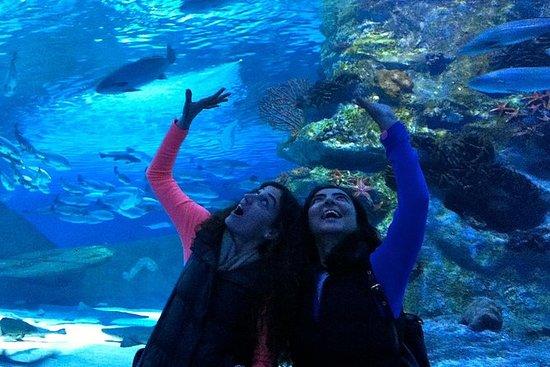 Acquario di Antalya con un breve tour