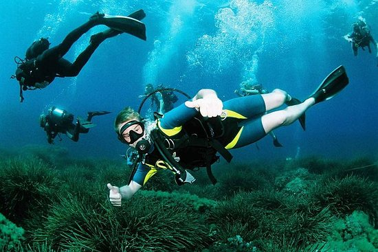 Scuba Diving Baptism and Snorkeling...