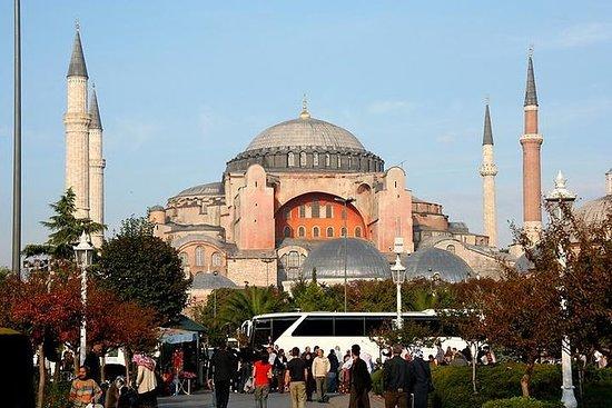 Halv-dagers Istanbul bytur fra Cruise...
