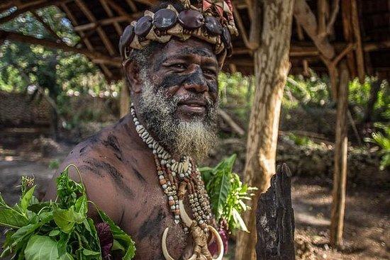 Ganztägige Vanuatu Inselrundfahrt ab...