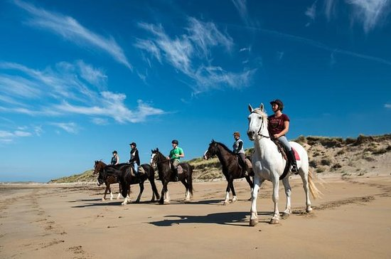 Wild Atlantic Way Beach Horseback Riding Excursion...