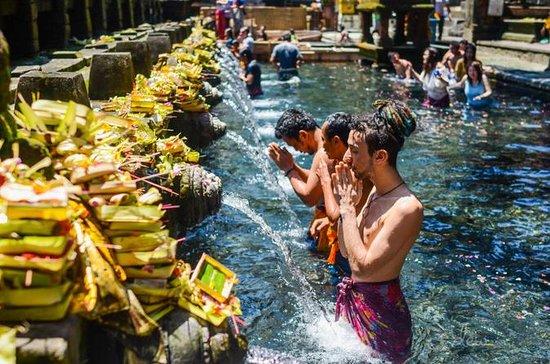 Private Tour : Bali Ubud Cultural...