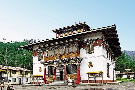 私人一日游:同一天甘托克到Phudong Monastery之旅
