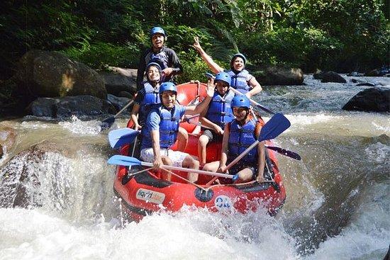 Ayung Rafting e Pacotes de Passeio ATV