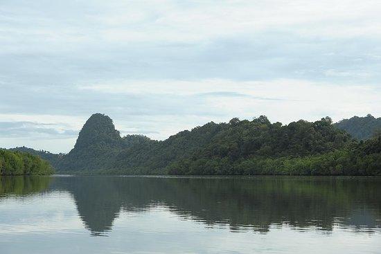Mangrove-riviercruise en zwemtocht ...