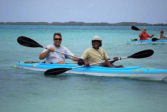 Excursión de Kayak y Kayak de...