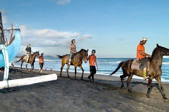 Bali Ridning och Uluwatu Tour