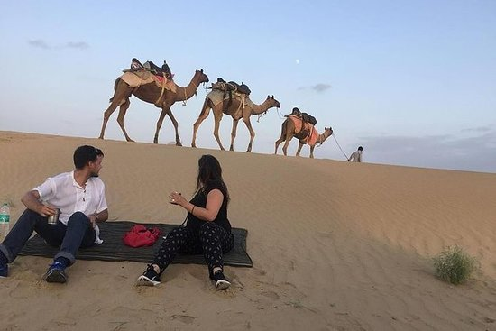 Half Day Camel Safari Sunset with...