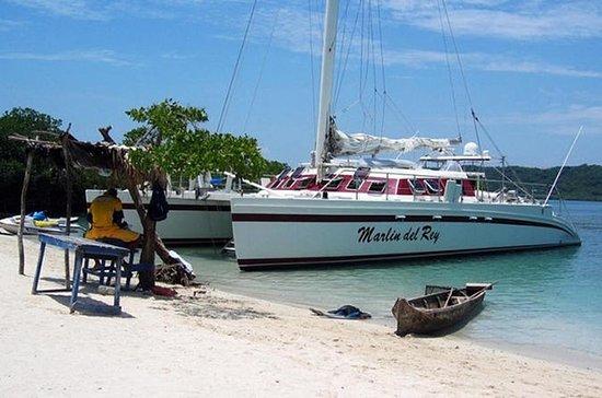 Marlin del Rey Catamaran Snorkel ...
