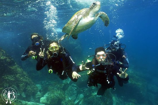 Mergulho com Cilindro em Cabo Frio RJ