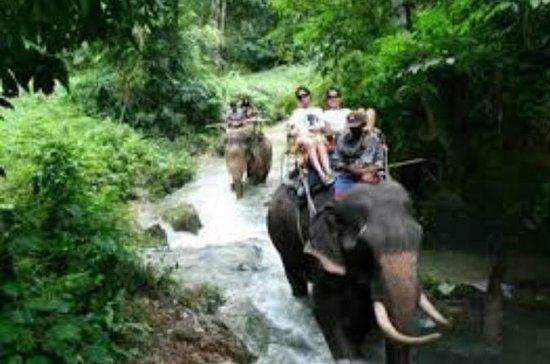 Full Day Safari e Rafting, Phuket