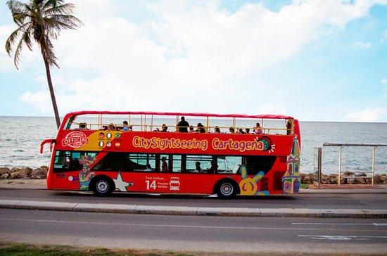 Tour della città e Bus Turistico de