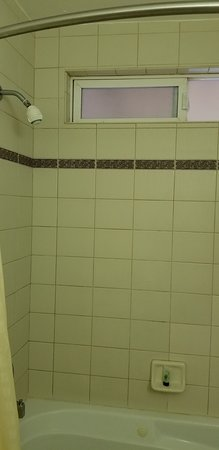 Monte Rio, Калифорния: the shower head needs to be replaced stat!