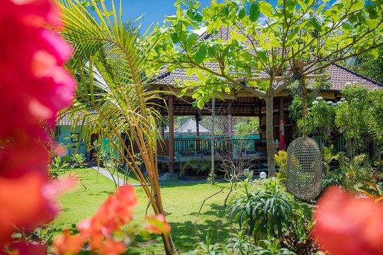 Serenity Yoga Lembongan: Our beautiful yoga jungle :)