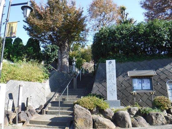 Sagami Kokubun-ji Temple
