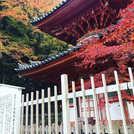 Kishiwada Photo