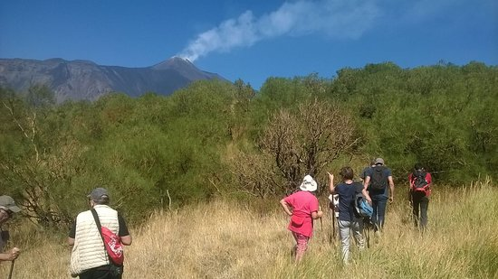 Etna Valle del Bove Excursions
