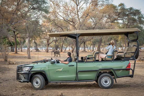 Mana Pools National Park Picture